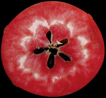 Redlove® – mehr als ein Apfel