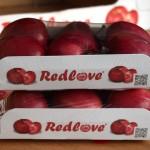 Die Original-Redlove® Verpackung