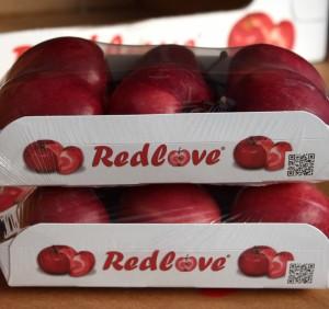 Redlove-Foodtainer