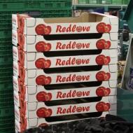 Redlove-Kartons